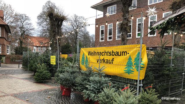 語 lernen ドイツ 【Detsch lernen】ドイツ語検定も終わり、クリスマス準備へ!ドイツのクリスマスは日本と違う?